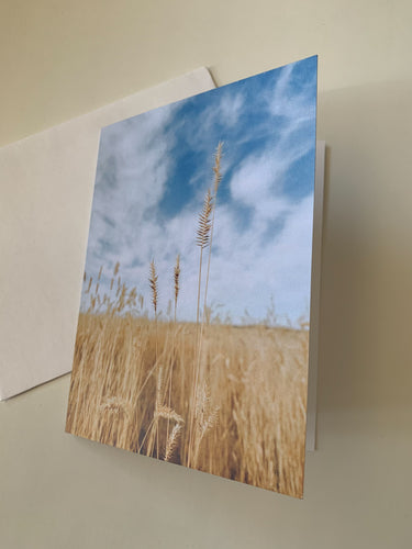 Alberta Fields Greeting Card