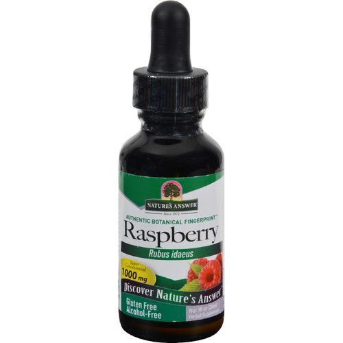 Nature's Answer Raspberry Leaf Alcohol Free - 1 fl oz