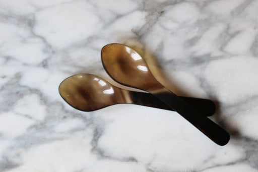Horn Coffee Spoon