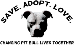 Save Adopt Love LLC - Eagan Minnesota 55123