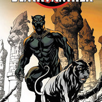 Marvel Black Panther Coloring Book - H-Town Toy Company