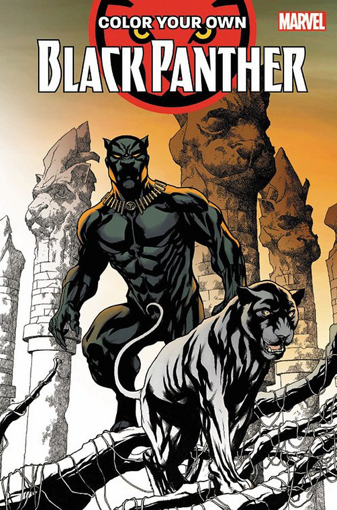 Marvel Black Panther Coloring Book | H-Town Toy Company