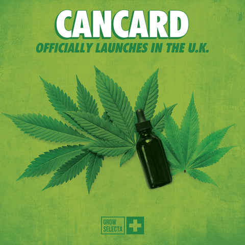 READ: Cancard officially launched in the U.K.