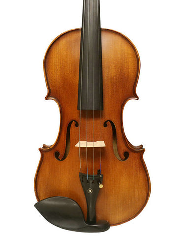 Wholesale Model SRV1006 Professional Korean Type Tiger Stripe Violin Different Sizes with Accessories