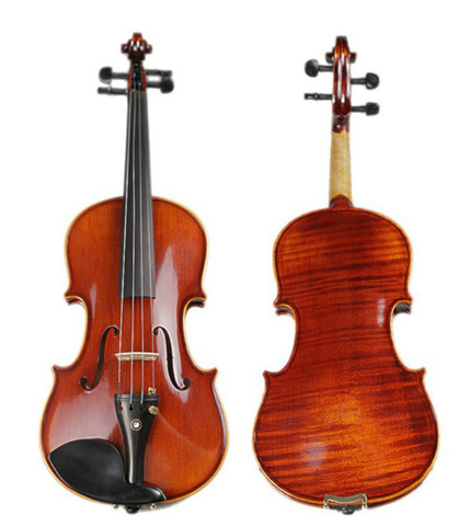 Buy & Wholesale Professional Solid Spruce & Ebony Whole Piece Back Violin Different Sizes with Accessories