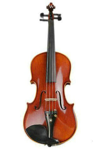 Buy Wholesale Professional Solid Spruce & Ebony Whole Piece Back Violin Different Sizes with Accessories