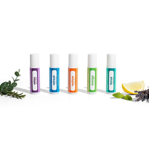 Holistic Variety Pack - No Rocketscience BV
