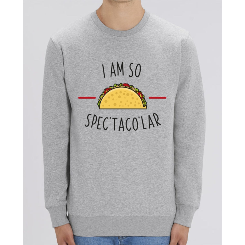 Sweat Unisexe - I am so spectacolar - Heather Grey / XXS - Unisexe>Sweatshirts