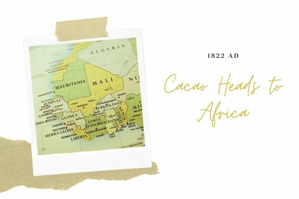 Cacao Heads to Africa