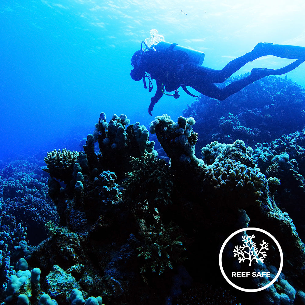 Scuba Diving, Coral Reef