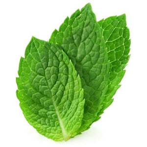 Spearmint Oil Organic Essential Oil