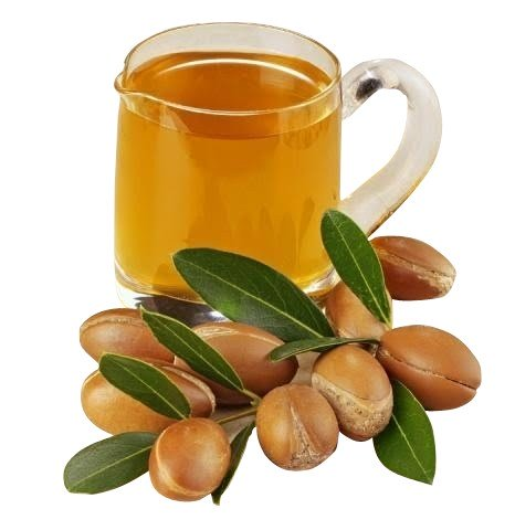 Argan Nut (Morocco) [2oz]