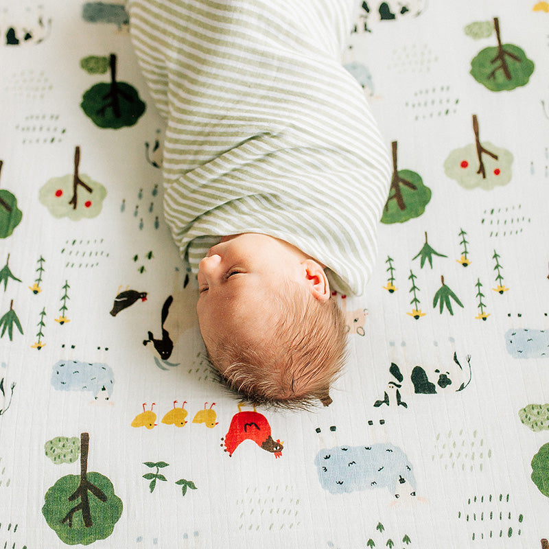 sleeping baby swaddled in a green stripe blanket laying on a family farm crib sheet