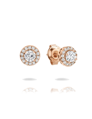 Georgini Petite Earrings - Rose Gold - Mocha