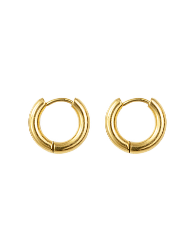 Zahar Darby Small Hoop Earrings - Mocha