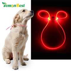 LemonBest LED Light Up Dog Pet Teddy Puppy Cat Night Safety Bright Luminous Adjustable Portable Collar Leash Products