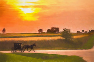 Sunset Amish Buggy Ride in Wisconsin