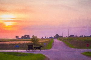 Sunset Amish Buggy Galloping Home