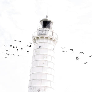 Cana Island Lighthouse Minimal