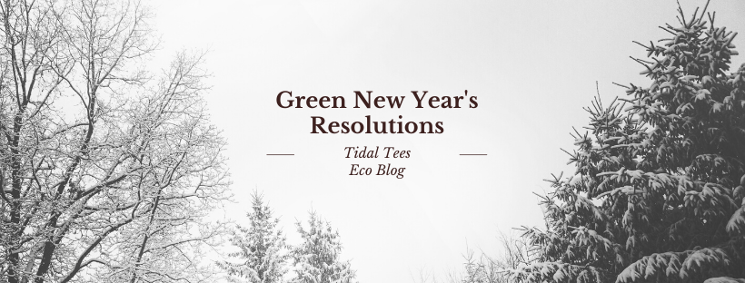 Green New Year's Resolutions
