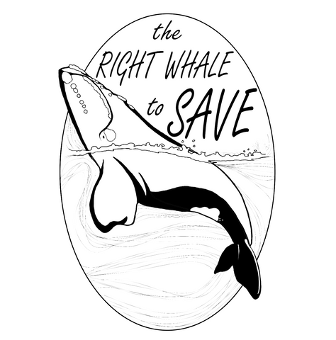Right Whale Collection