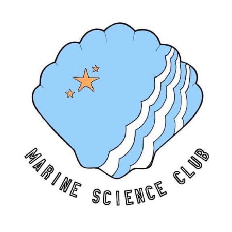 SBU Marine Science Club