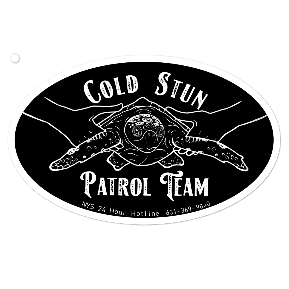 Cold Stun Patrol Team Decal