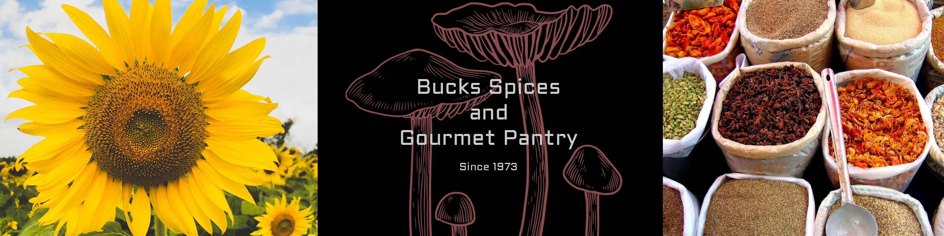 Bucks Spices Logo