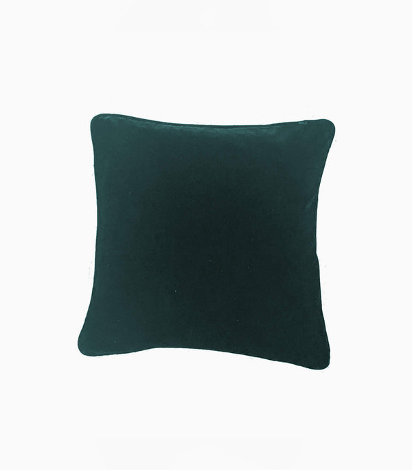 Tia- velvet pillow