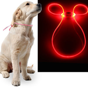 Light Up LED Leash!