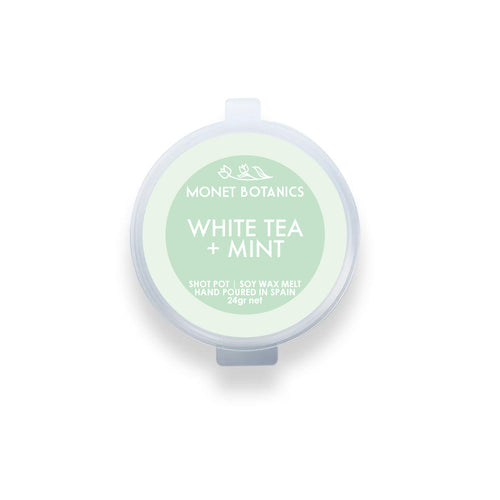 White Tea + Mint 24gr shot pot