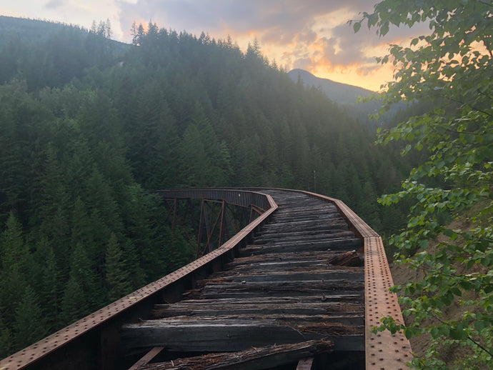 Ladner Creek Trestle Bridge - After the fire