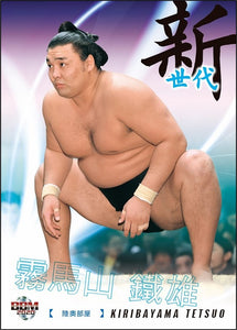 Sumo Trading Cards - 2020 series 2   -  New!