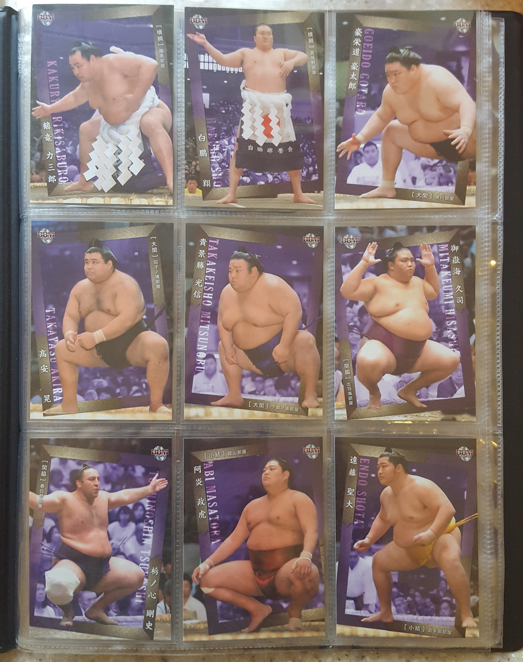 Trading Card 9-pocket collector's album