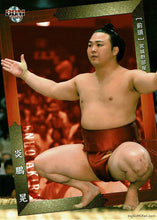 Sumo Trading Card January 2020 Enho