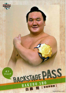 Sumo Trading Card January 2020 Hakuho