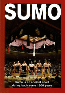 Sumo Introductory Brochure - English