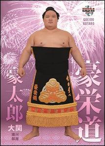 "Sumo Trading Cards - 2017 ""Tamashii"" series - One Pack"