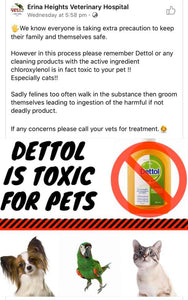 Dettol Can Be Toxic To Animals