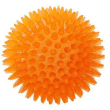 Ruff Play Balls - Spiky Balls