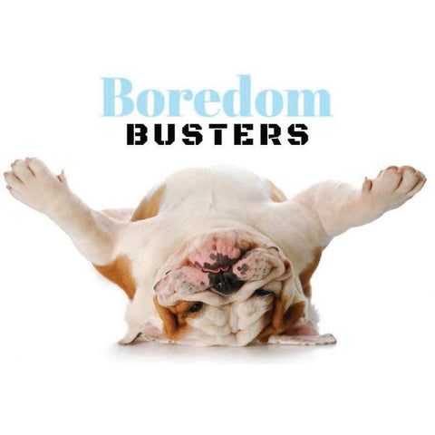 Boredom Buster Box - Furevables Pet Boutique