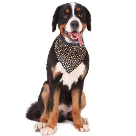 Paw Print Bandana - Furevables Pet Boutique