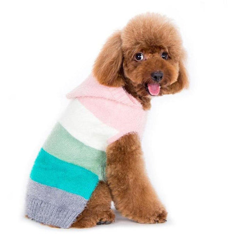 Colour Stripe Hoodie Sweater - Furevables Pet Boutique