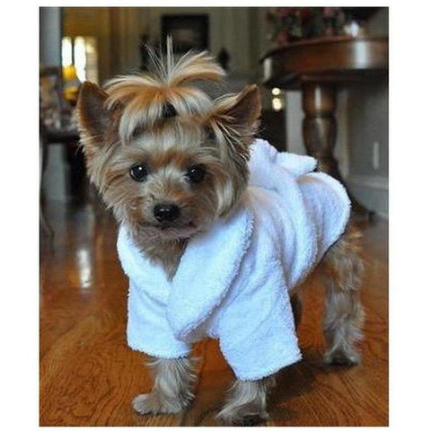 Tiara Luxury Bathrobe - Furevables Pet Boutique