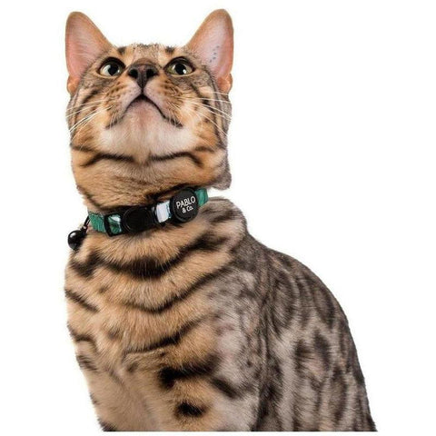 Leaf Me alone Collar - Furevables Pet Boutique