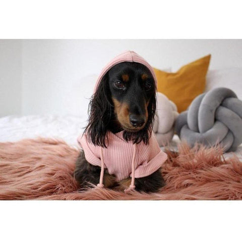 Ribbed Lounge Hoodie - Furevables Pet Boutique