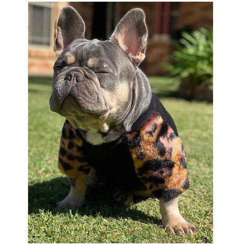Primal Faux Fur Jumpers - Furevables Pet Boutique