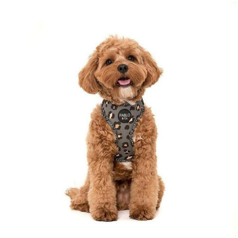 Furevablles Pet Boutique -Khaki Harness Pablo & Co