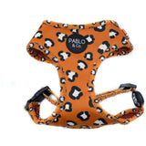 Leopard Harness Pablo & Co - Furevables Pet Boutique