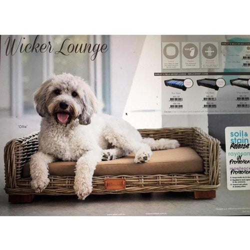 Barkley & Bella - Wicker Lounge - COCOA COVER ONLY